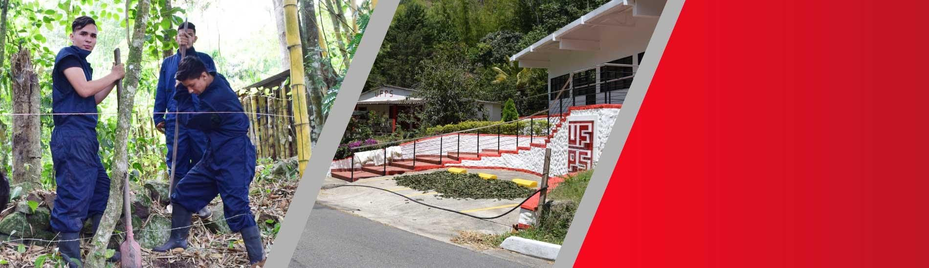 La Finca San Pablo, lugar de prácticas agropecuarias para los estudiantes de zootecnia